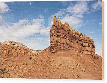 Ojitos De Los Gatos - New Mexico Wood Print by Brian Harig