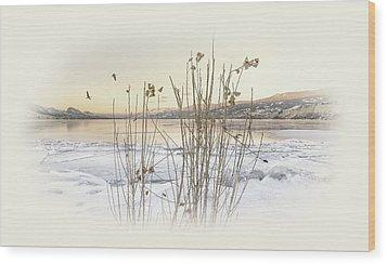 Wood Print featuring the photograph Okanagan Glod by John Poon