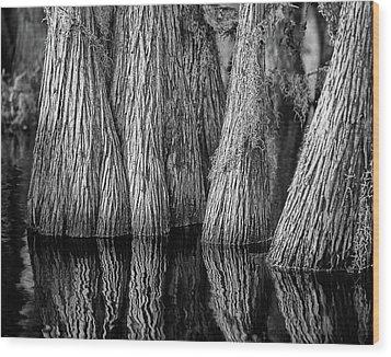 Okefenokee Cypress Wood Print