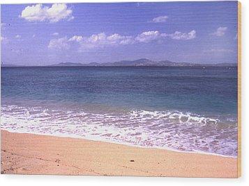 Okinawa Beach 16 Wood Print by Curtis J Neeley Jr
