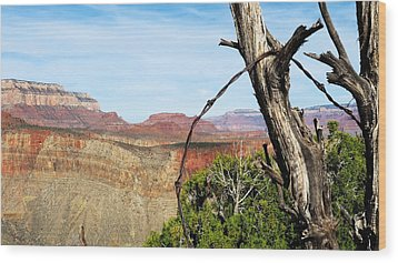 Ol' Fence On Horseshoe Mesa Wood Print