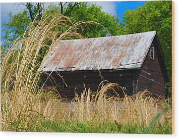 Old Barn In Roxborough Wood Print by Bill Cannon