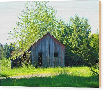 Old Barn Wood Print by Lisa Rose Musselwhite