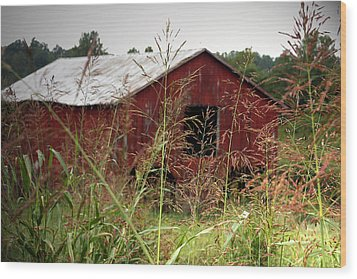 Old Barn Xii Wood Print