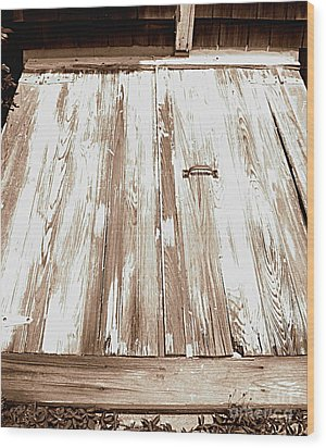 Old Basement Doors Wood Print by Colleen Kammerer
