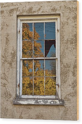 Old Broken Window Wood Print by Michael Flood