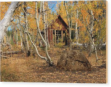 Old Cabin In The Aspens Wood Print by James Eddy