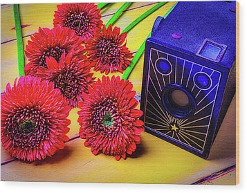 Old Camera And Dasies Wood Print by Garry Gay