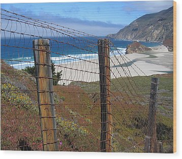 Old Cattle Ranch In Big Sur Wood Print by Don Struke
