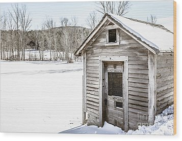 Old Chicken Coop In Winter Wood Print by Edward Fielding