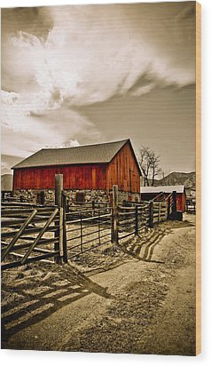 Old Country Farm Wood Print by Marilyn Hunt