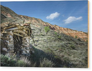 Wood Print featuring the photograph Old Country Hovel by RicardMN Photography