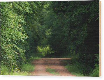 Wood Print featuring the photograph Old Dirt Road by Shelby Young