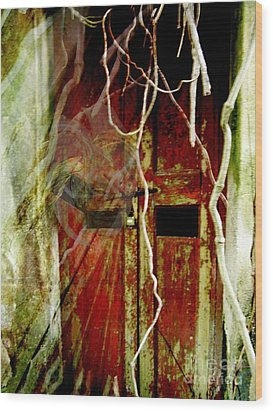 Old Door Set Three Something There Wood Print by Kathy Daxon