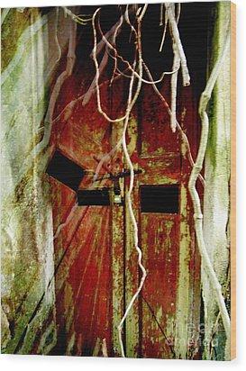 Old Door Set Two Haunted Wood Print by Kathy Daxon