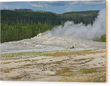 Old Faithful - An American Icon In Yellowstone National Park Wy Wood Print by Christine Till