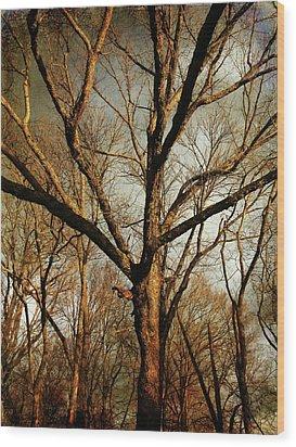 Old Faithful Wood Print by Amy Tyler