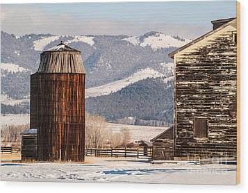 Old Farm Buildings Wood Print by Sue Smith