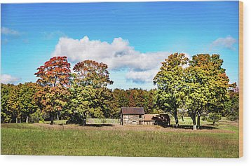 Wood Print featuring the photograph Old Farm House by Onyonet  Photo Studios