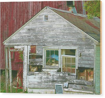 Old Farm Shed Wood Print by Elaine Frink