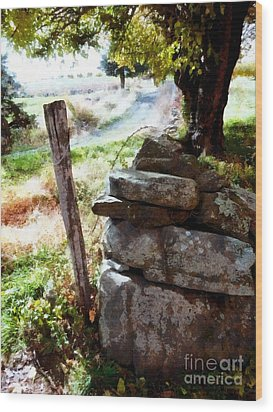 Wood Print featuring the photograph Old Fence Post Orchard by Janine Riley