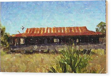 Old Florida Paint Wood Print by Michael Morrison