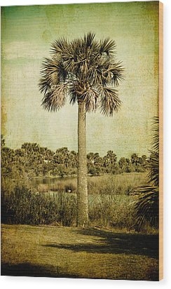 Old Florida Palm Wood Print by Rich Leighton