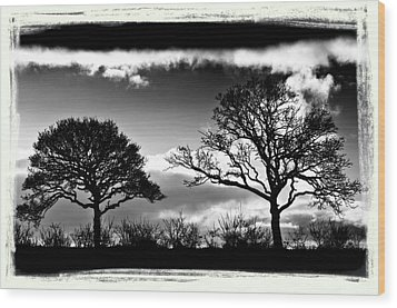 Old Friends Wood Print by Mark Denham