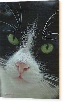 Old Green Eyes Wood Print by DigiArt Diaries by Vicky B Fuller