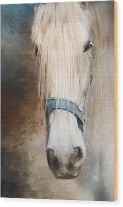 Wood Print featuring the photograph Old Grey by Robin-Lee Vieira