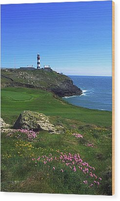 Old Head Of Kinsale Lighthouse Wood Print by The Irish Image Collection
