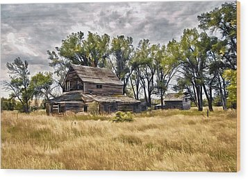 Old House And Barn Wood Print by James Steele