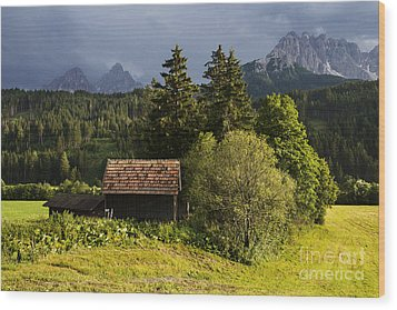 Wood Print featuring the photograph Old Hut In Austria by Yuri Santin