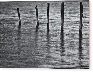 Wood Print featuring the photograph Old Jetty - S by Werner Padarin