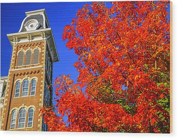 Old Main Maple Wood Print by Damon Shaw