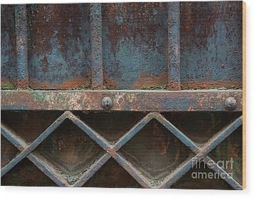 Wood Print featuring the photograph Old Metal Gate Detail by Elena Elisseeva