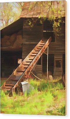 Old North Carolina Barn And Rusty Equipment   Wood Print by Wilma Birdwell