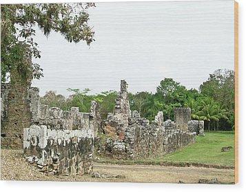 Old Panama City Ruins 8 Wood Print by Douglas Barnett