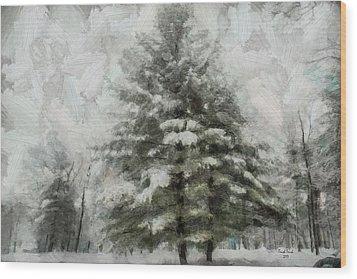 Old Piney Wood Print by Trish Tritz
