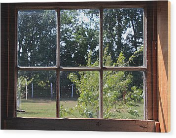Wood Print featuring the photograph Old Pitted Glass Window by Joanne Coyle