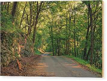 Wood Print featuring the photograph Old Plank Road by Cricket Hackmann