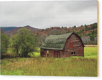 Old Red Adirondack Barn Wood Print by Nancy De Flon