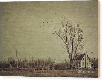 Old Rural Farmhouse With Grunge Feeling Wood Print by Sandra Cunningham