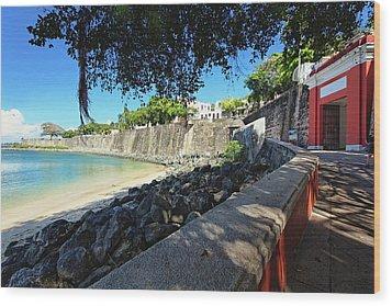 Old San Juan City Gate  Wood Print by George Oze