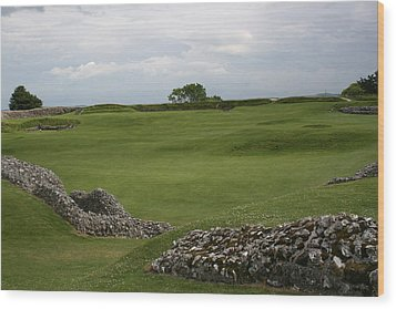 Old Sarum Wood Print by Mary Mikawoz
