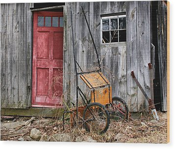 Old Shed Red Door And Pony Cart Wood Print by Betty  Pauwels