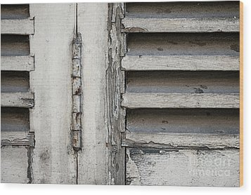 Wood Print featuring the photograph Old Shutters by Elena Elisseeva