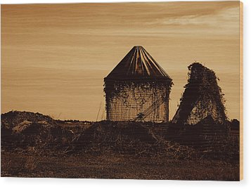 Wood Print featuring the photograph Old Silo by Kathleen Stephens