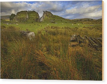 Wood Print featuring the photograph Old Slate Quarry At Rhyd Ddu by Richard Wiggins