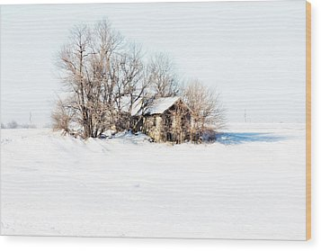 Wood Print featuring the photograph Old  Stone House Milford by Julie Hamilton
